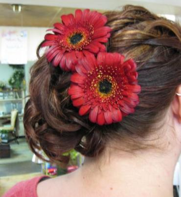 Gerbera Daisy hair pins